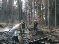 Požár  lesa u Lštení 9.4.2020